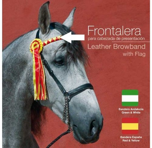 Presentation browband with rosettes and ribbons